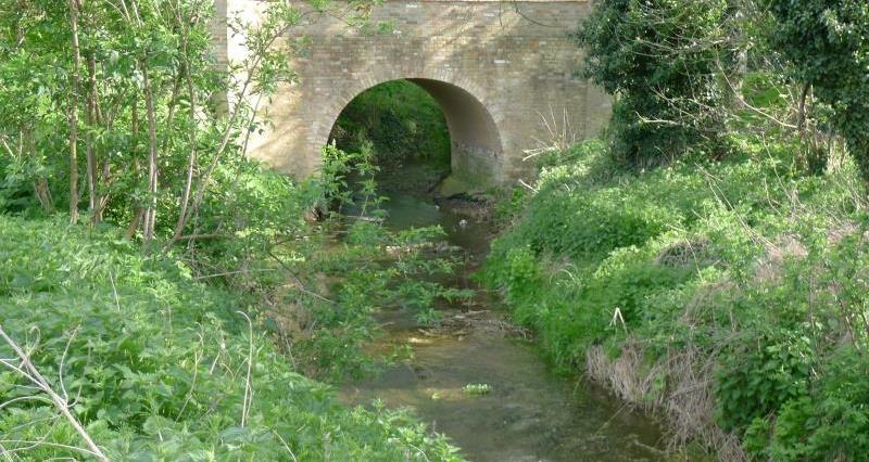 River Kennett_43509