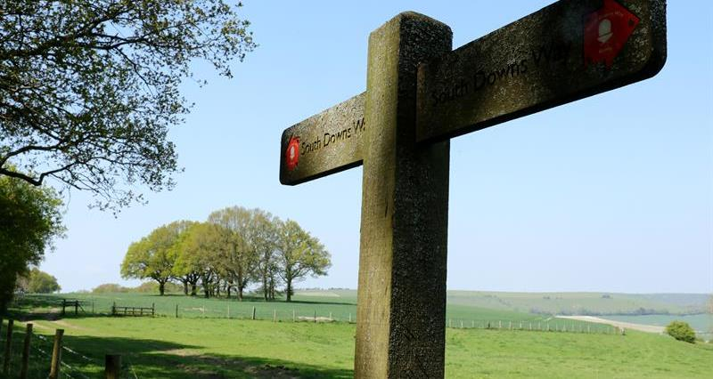 South Downs Way Signpost_73349