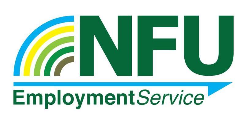 就业服务logo_18670