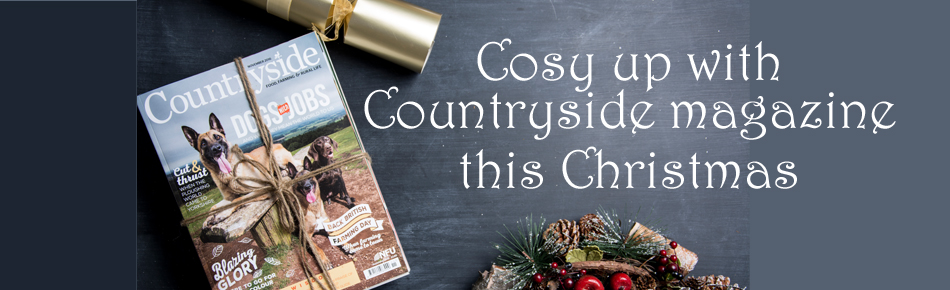 Christmas Membership Scroller Countryside 2016_38570