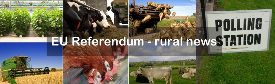 EU Referendum - Countryside June 2016_35475