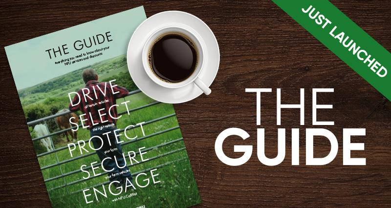 The Guide NFUonline_61652