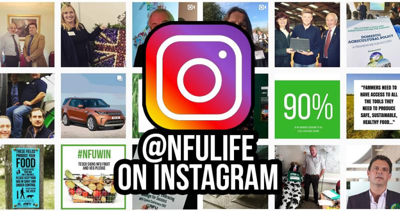Follow us on our new NFU Instagram: NFULife