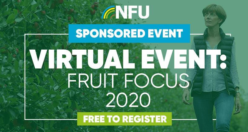 Hear from the NFU at this year's virtual Fruit Focus