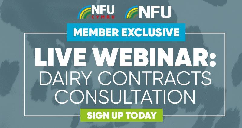 Webinar: Dairy contracts consultation - why it matters