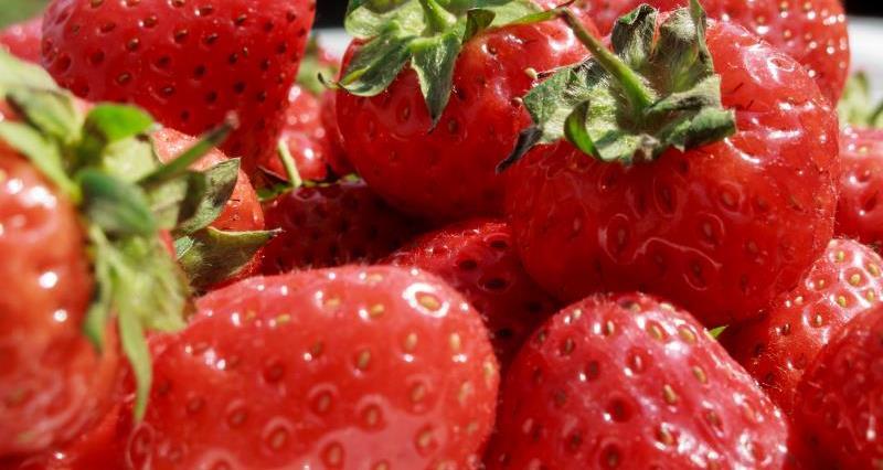 Strawberries_9959