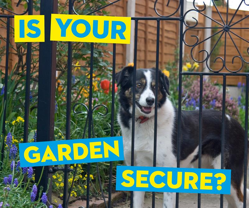 Is your garden secure social media_65412