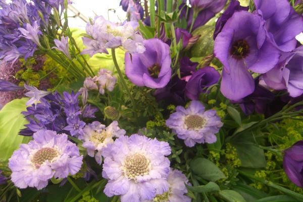Hampton court Flower Show 2013_16533