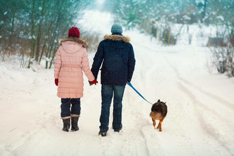 Winter countryside walk_39689