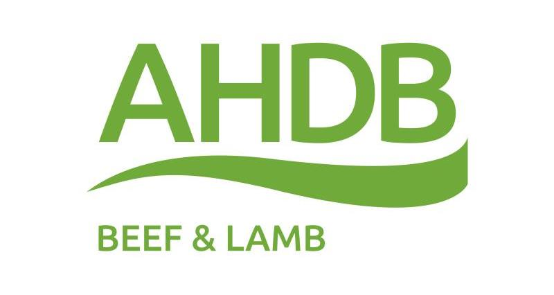 AHDB Sector Board looking for Auctioneer