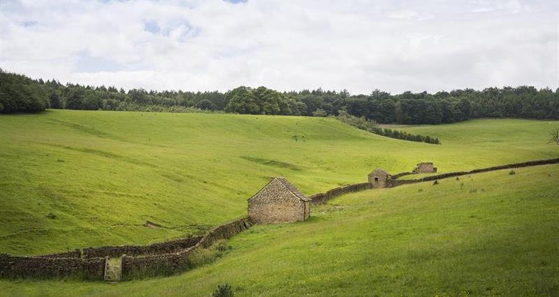 Derbyshire Landscape_63468