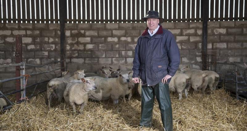 NFU urges Morrisons to be clear on lamb sourcing policies