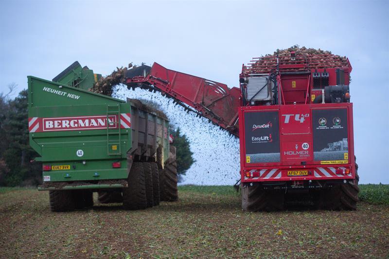Sugar beet harvest December 2018_62137