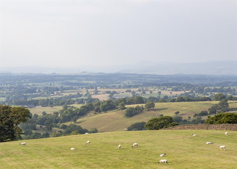 Lancashire uplands farmland_59695