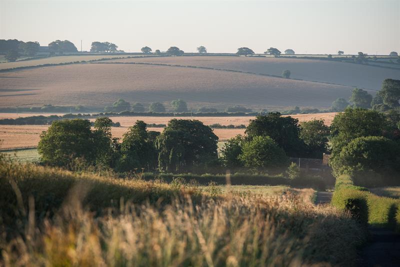 Farming landscape_62523