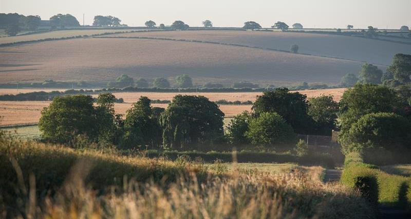 Environment Bill: Full NFU briefing for members