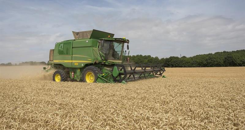 Video: Mind your head during harvest