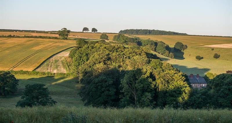 Farming landscape_62517