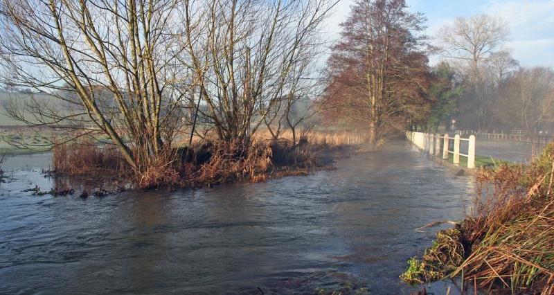 Winter flood River Meon near Southampton_52553