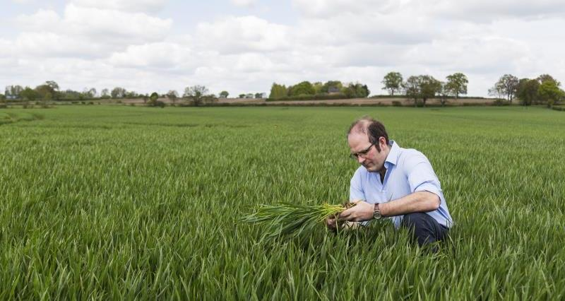 Arable Farming: Systems based research