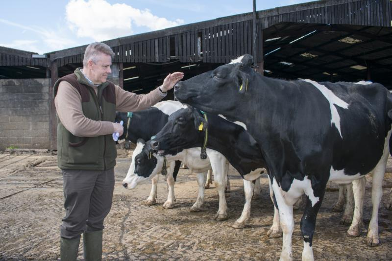 Dairy farmer_52953