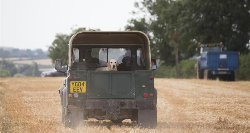 NFU responds to consultation on petrol/diesel vehicle phase out