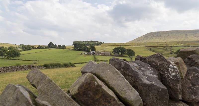 Lancashire uplands farmland_59687