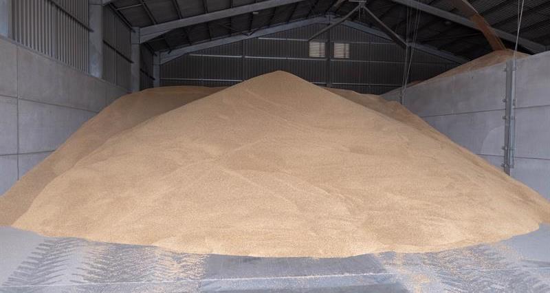 Grain storage barley harvest August 2018_62463