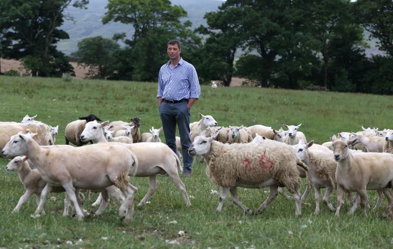 Richard Findlay on farm July 2018_55357