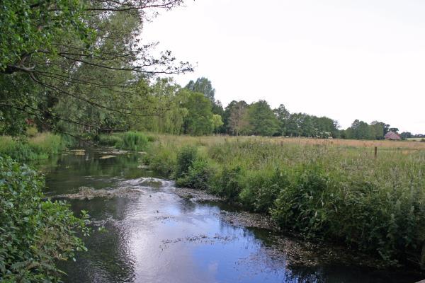 Watercourse River Dun_52546