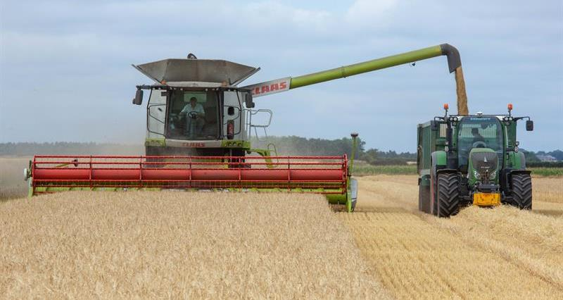Harvest in Lincolnshire August 2018_62411