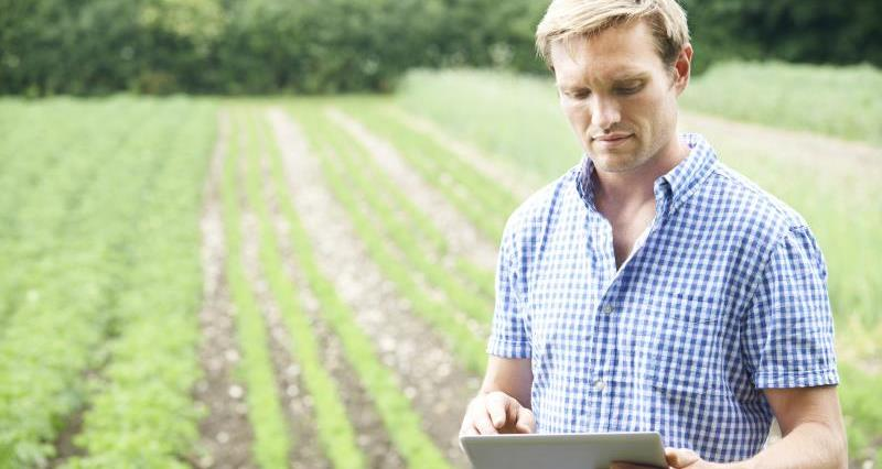 Farmer on farm using tablet_28362