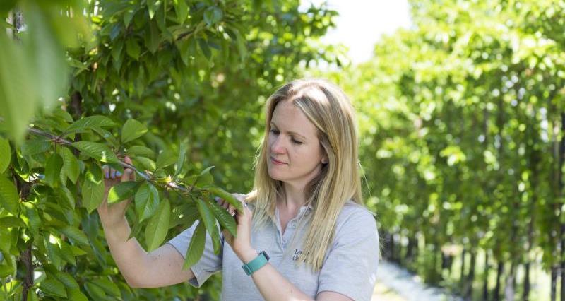 Emily Cliff Lower Hope Fruit_55014