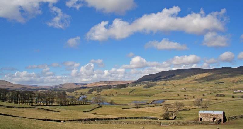 Wensleydale landscape_13633