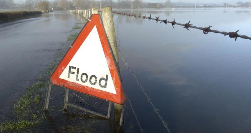 A flood sign in flooded field_21830