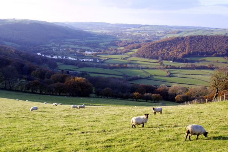 wales landscape_30454
