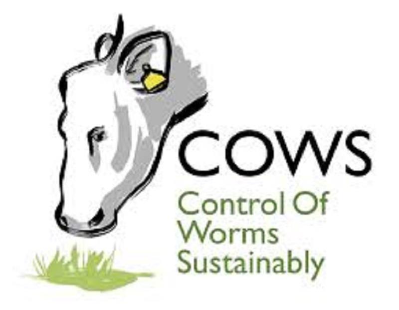 COWS_61188