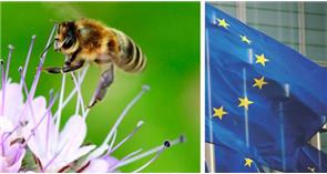 EU Parliament Votes Against Implementation of Bee Protection Law