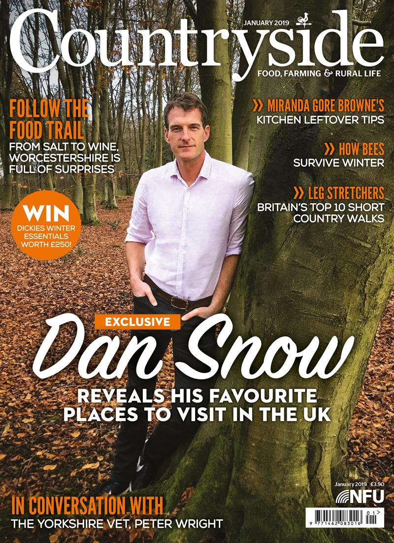 Countryside cover January 2019_58906