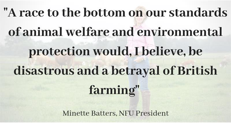 Minette Batters quote - BBC radio 4_65358