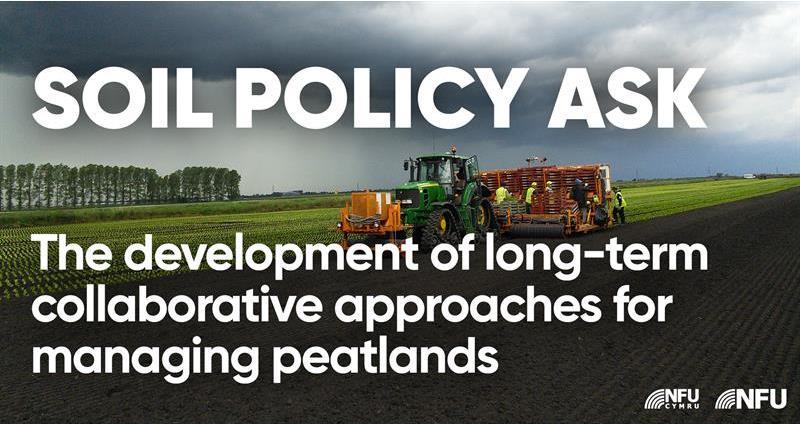 Soils ask: Long-term collaborative approach on peatlands_71055