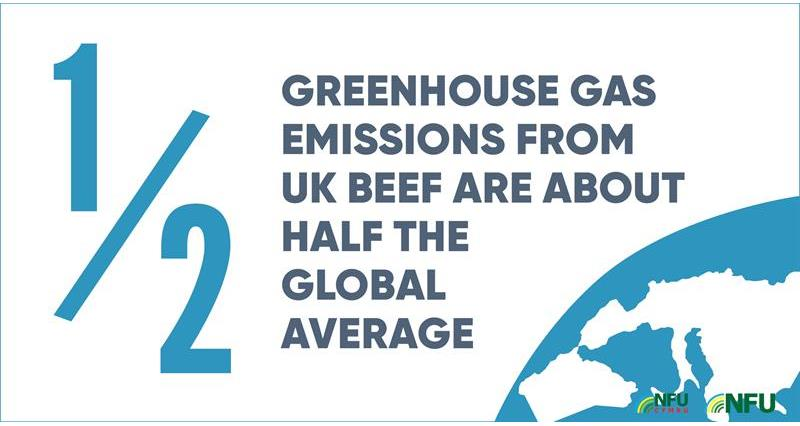 Instagram British beef greenhouse gas carbon footprint infographic_70702