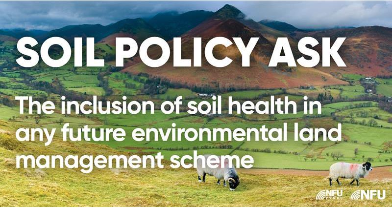 Soils ask: Include soil health management options in any future agri-environment schemes_71051