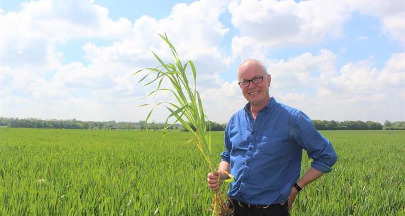 Virtual organic farm walk: Challenges of net zero