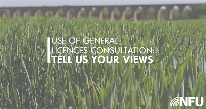 General licence consultation_64989