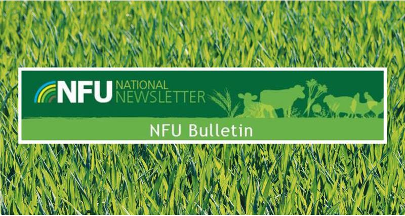 Bulletin _64168