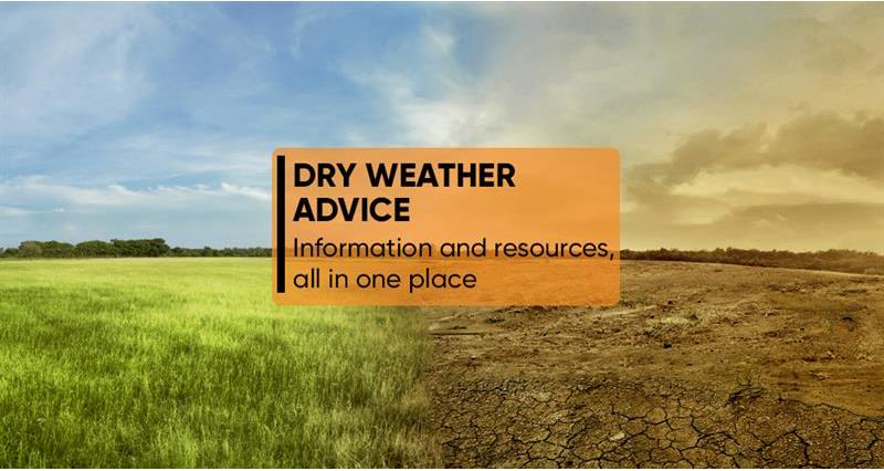 Dry weather advice - all the information in one place