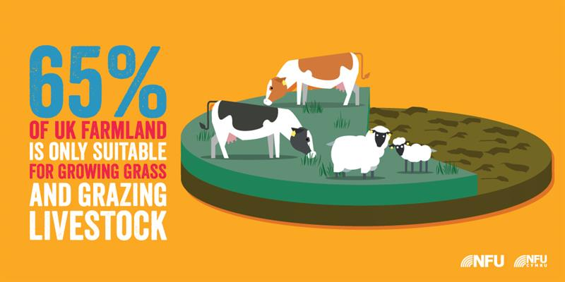 uplands infographic_61465