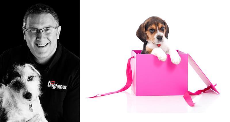 Dogfather Graeme Hall_58958