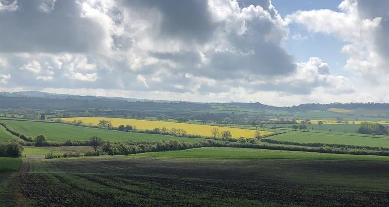 Farming landscape view - Tom Newbery's farm_65116